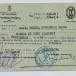 Certificado servicio Social
