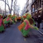 El lloro Raval que.. La comparsa en plena coreografia per les Rambles de Barcelona.