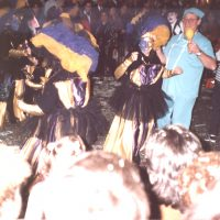 Carnaval Venecià a la desfilada